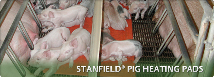 Stanfield Pig Heating Pads