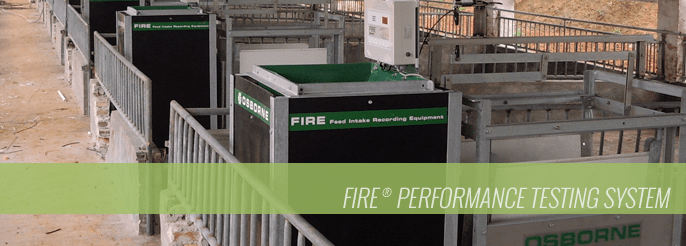 FIRE Performance Testing System