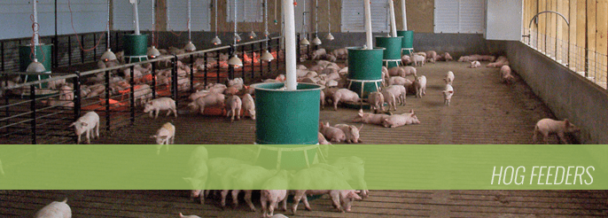 Hog Feeders