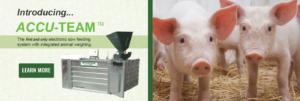 Accu-Team Electronic Sow Feeding Systems