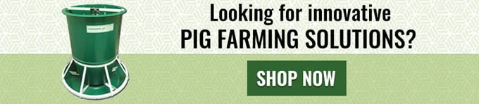 Pig Farming Equipment CTA