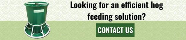 Hog Feeder Contact