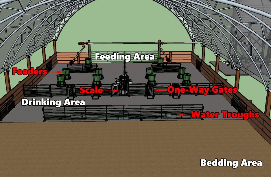 livestock hoop building